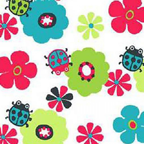 Dynamic Orthopedics Transfer Paper Ladybugs