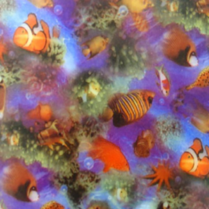 Dynamic Orthopedics Transfer Paper Nemo Fish