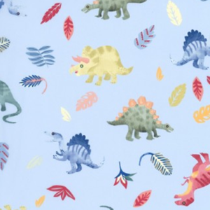 Dynamic Orthopedics Transfer Paper New Dinosaurs 1