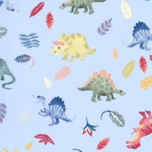 Dynamic Orthopedics Transfer Paper New Dinosaurs 1