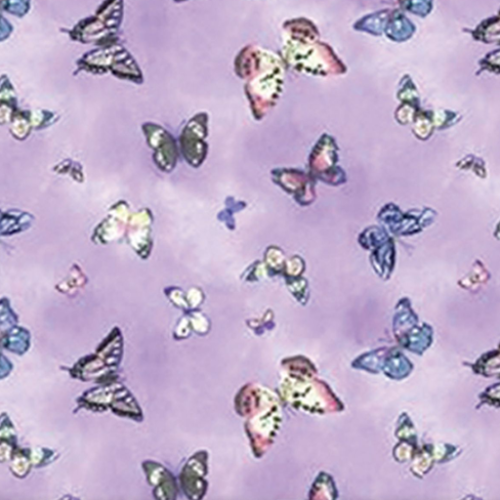 Dynamic Orthopedics Transfer Paper Real Butterflies