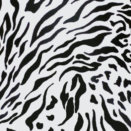 Dynamic Orthopedics Transfer Paper Zebra