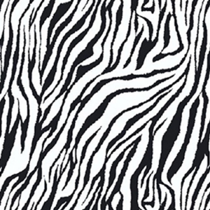 Dynamic Orthopedics Transfer Paper Zebra New